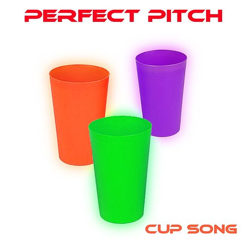 Cup Song by Perfect Pitch