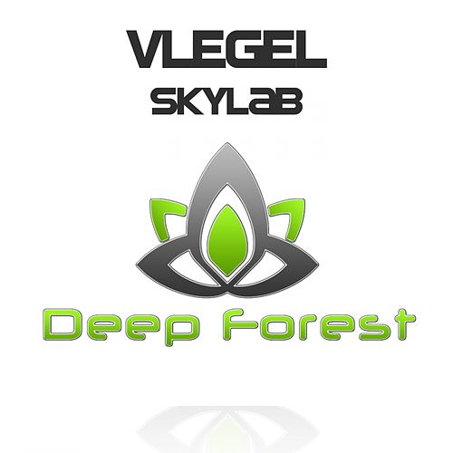 Skylab by Vlegel
