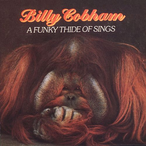 A Funky Thide Of Sings by Billy Cobham