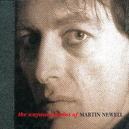 The Wayward Genius Of Martin Newell by Various Artists