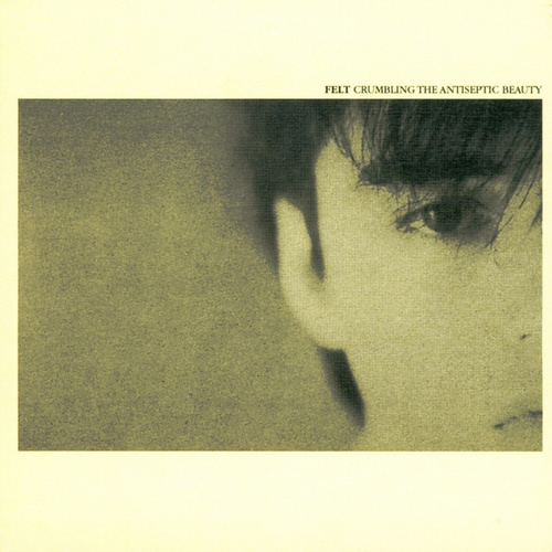 Crumbling the Antiseptic Beauty / The Splendour of Fear (Remastered Edition) by Felt