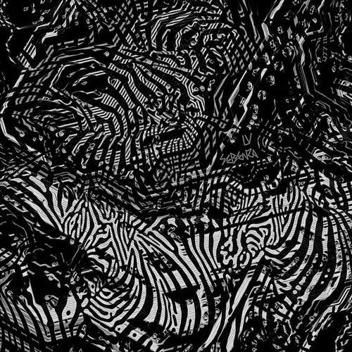Sebenza von Various Artists