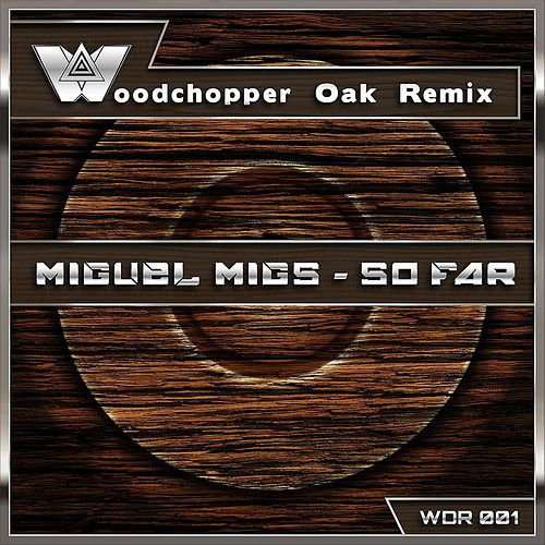 So Far (Woodchopper Oak Remix) by Miguel Migs
