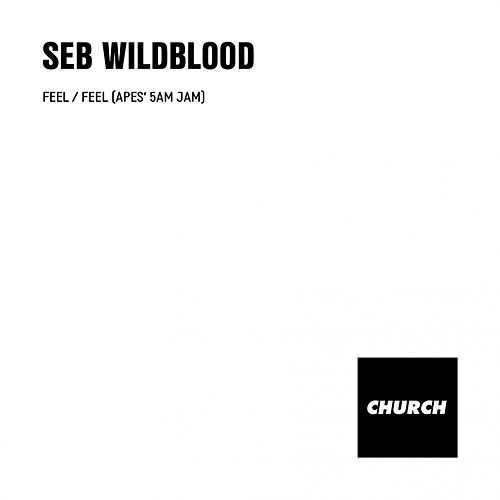 Feel by Seb Wildblood