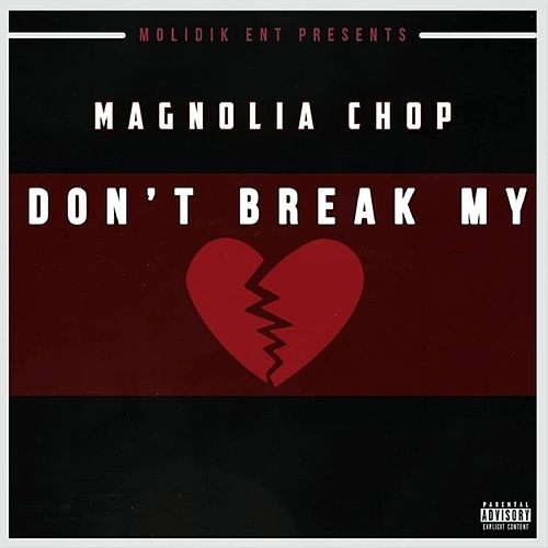 Don't Break My Heart - Single von Magnolia Chop