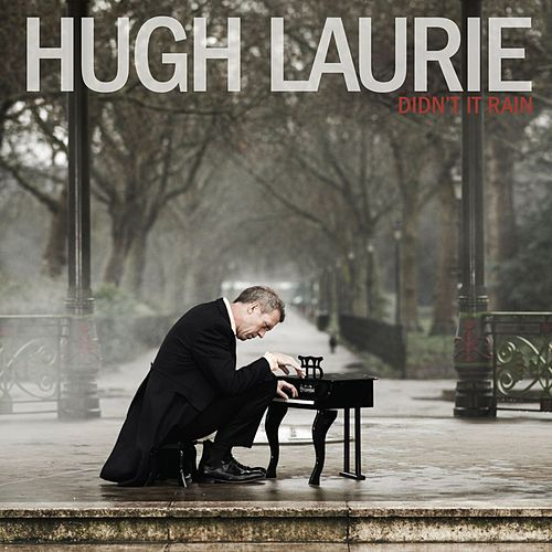 Didn't It Rain von Hugh Laurie