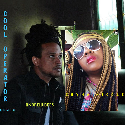 Cool Operator Remix - Single by Andrew Bees
