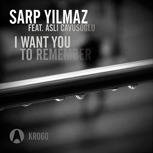 I Want You To Remember by Sarp Yilmaz