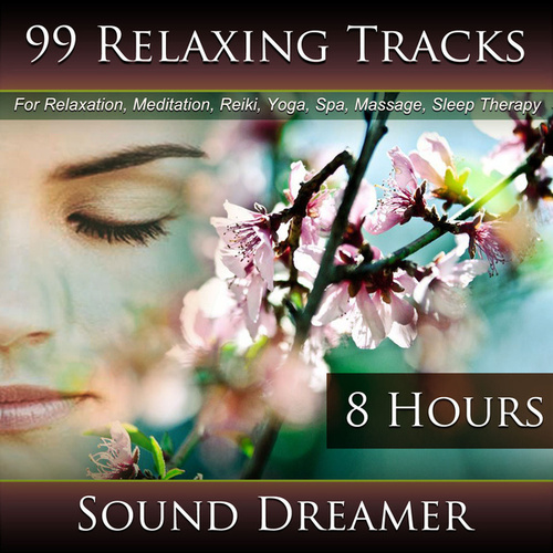 99 Relaxing Tracks (8 Hours) for Relaxation, Meditation, Reiki, Yoga, Spa, Massage and Sleep Therapy de Sound Dreamer