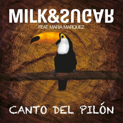 Canto del Pilón de Milk & Sugar