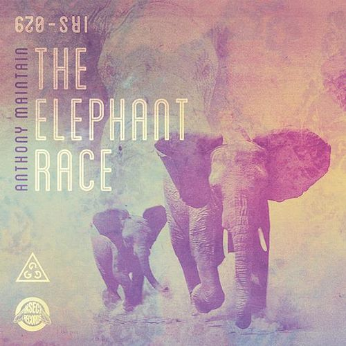 The Elephant Race by Anthony Maintain