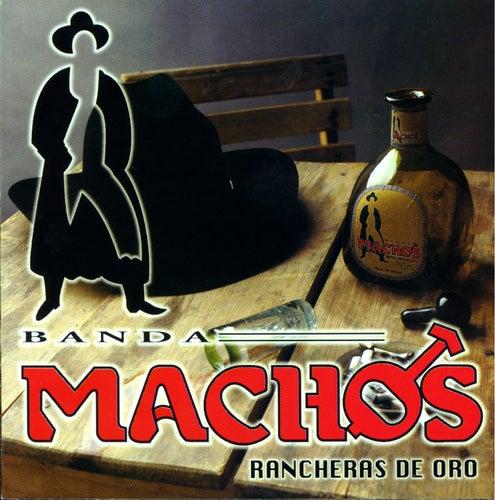Rancheras De Oro de Banda Machos