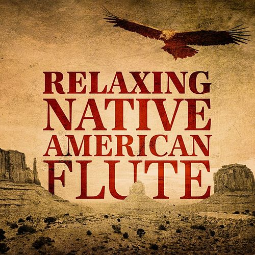 Relaxing Native American Flute van Various Artists