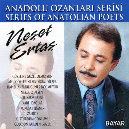 Ölmeyen Türküler, Vol. 2 (Anadolu  Ozanları Serisi) von Neşet Ertaş