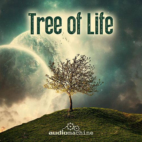 Tree of Life von Audiomachine