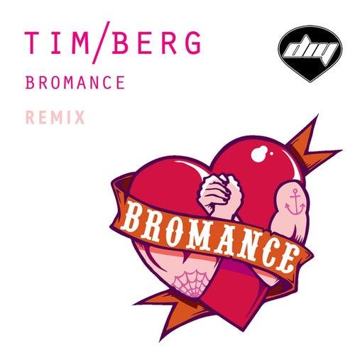 Bromance (Remix) di Avicii