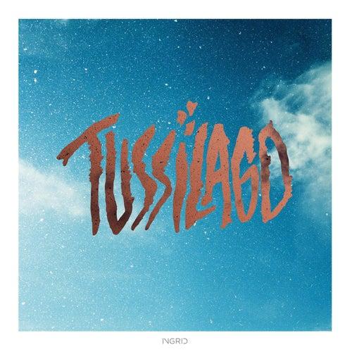 Tussilago von Tussilago