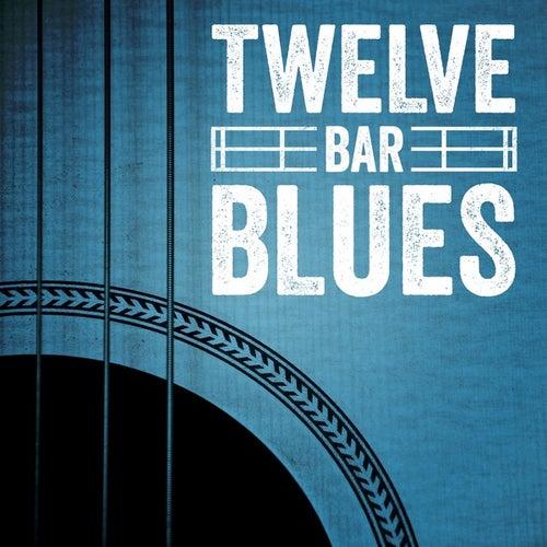 Twelve Bar Blues de Various Artists