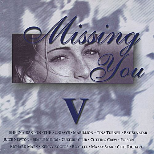 Missing You V de Various Artists