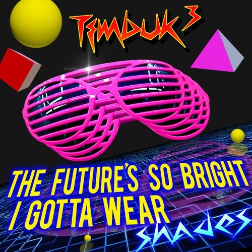 The Future's So Bright, I Gotta Wear Shades (Re-Recorded) - Single von Timbuk 3