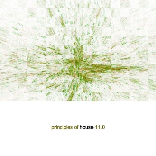 Principles of House, Vol. 11 de Various Artists