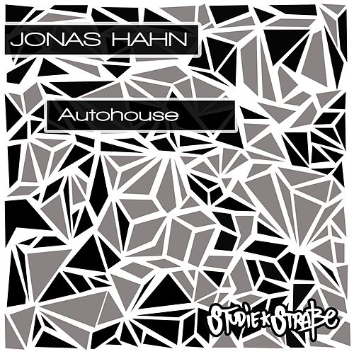 Autohouse de Jonas Hahn