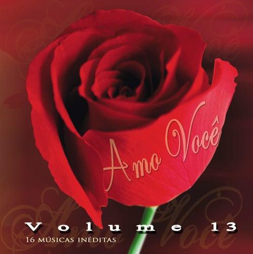 Amo Você Volume 13 by Various Artists