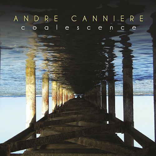 Coalescence by Andre Canniere