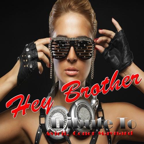 Hey Brother: Tribute to Avicii, Conor Maynard de Various Artists