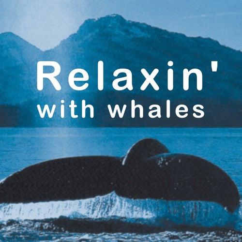 Relaxin' With Whales von Walton Ornato
