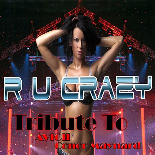 R U Crazy: Tribute to Avicii, Conor Maynard de Various Artists