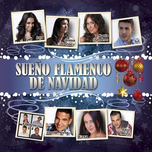 Sueño Flamenco de Navidad de Various Artists