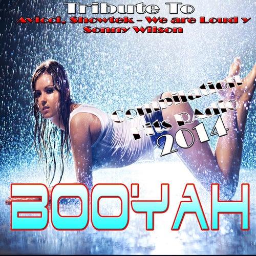 Booyah: Tribute to Avicii, Showtek - We Are Loud Y Sonny Wilson de Various Artists