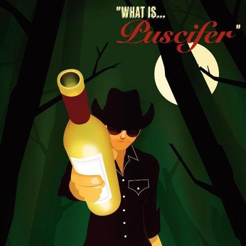 What Is... de Puscifer