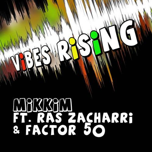 Vibes Rising (Remixes) by Mikkim