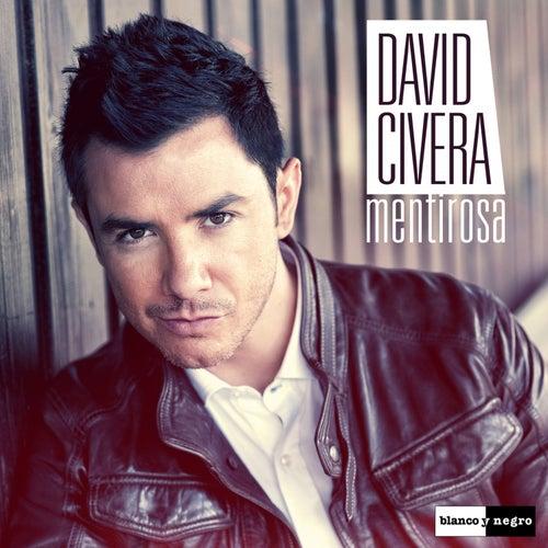Mentirosa de David Civera