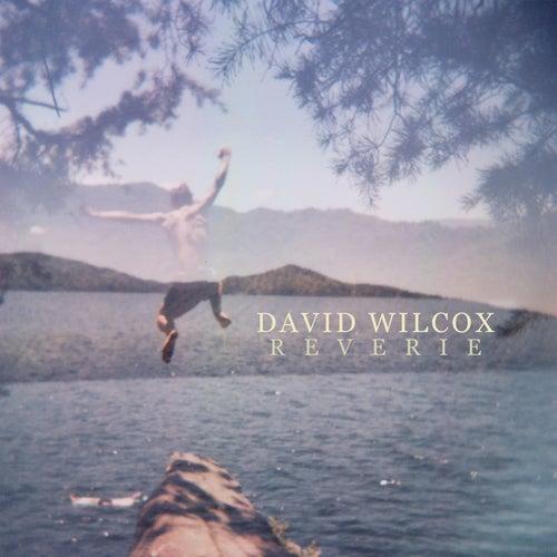 Reverie von David Wilcox