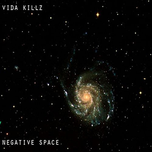 Negative Space by Vida Killz