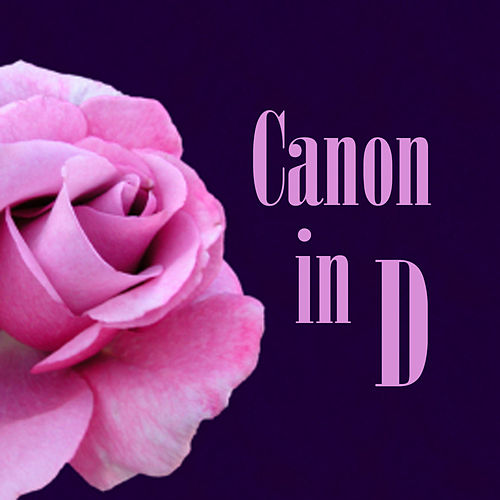 Canon in D by Piano Brothers