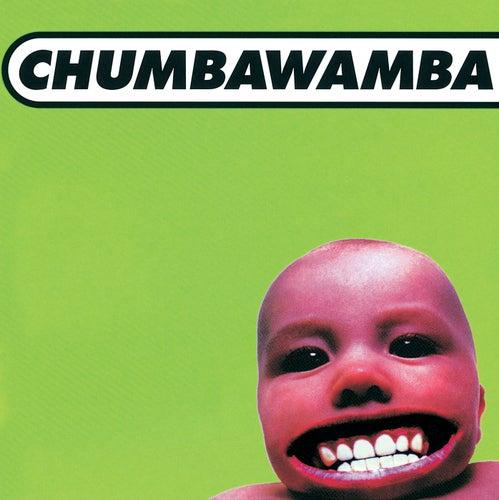 Tubthumper de Chumbawamba