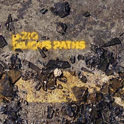 Bilious Paths de Mu-Ziq