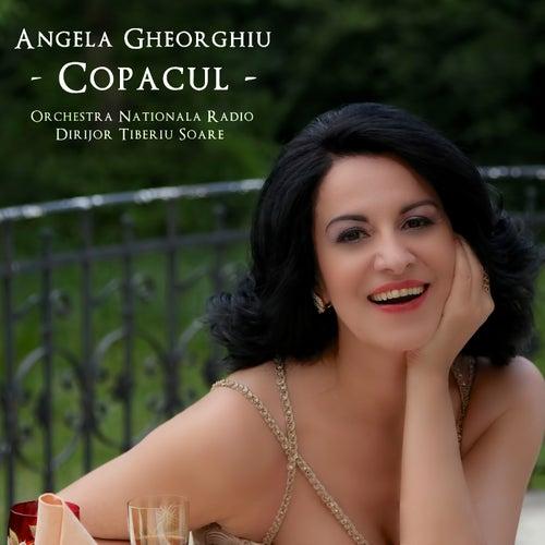 Copacul de Angela Gheorghiu