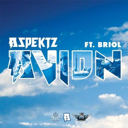Avion (feat. Briol) by Aspektz