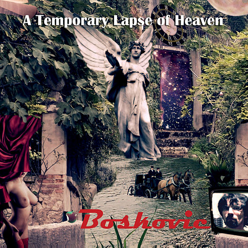 A Temporary Lapse of Heaven di Boskovic