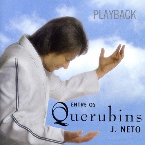 Entre Os Querubins (Playback) de J. Neto