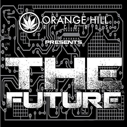 Orange Hill Records Presents 'the Future' by Various Artists