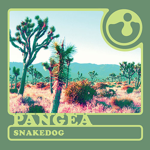 Snakedog by Together Pangea