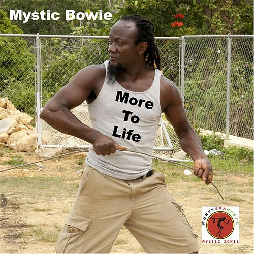 More to Life by Mystic Bowie