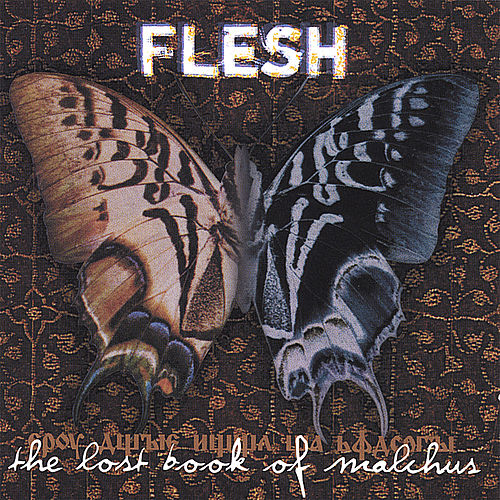 The Lost Book Of Malchus by Flesh