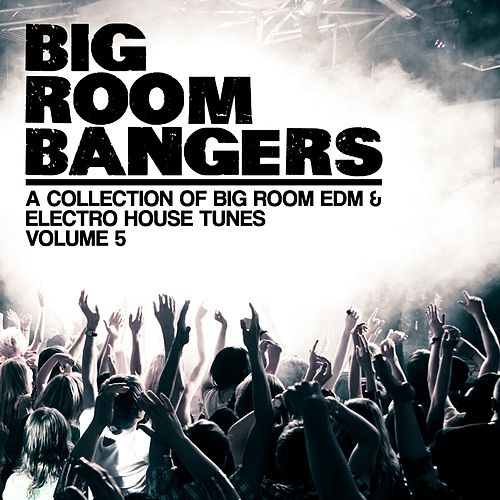 Bigroom Bangers, Vol. 5 (A Collection of Big Room EDM & Electro House Tunes) von Various Artists